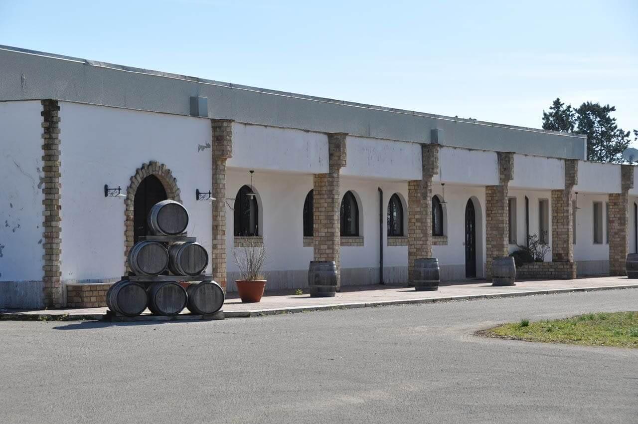 7 D'Alfonso Del Sordo_L'azienda raccontata dal blog di yespuglia.com enoteca online piu innoivativa di puglia