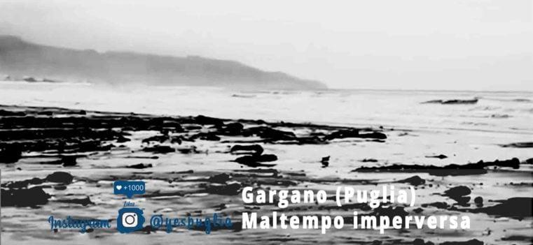 Garagano Maltempo- Yespuglia.com Enoteca Online