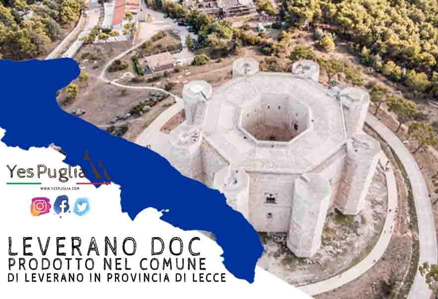Vino Leverano Doc. YesPuglia.com L'Enoteca online più innovativa di Puglia