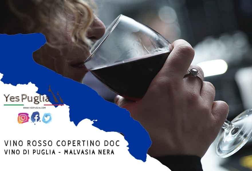 Vino rosso Copertino Doc - Vino di Puglia - Malvasia