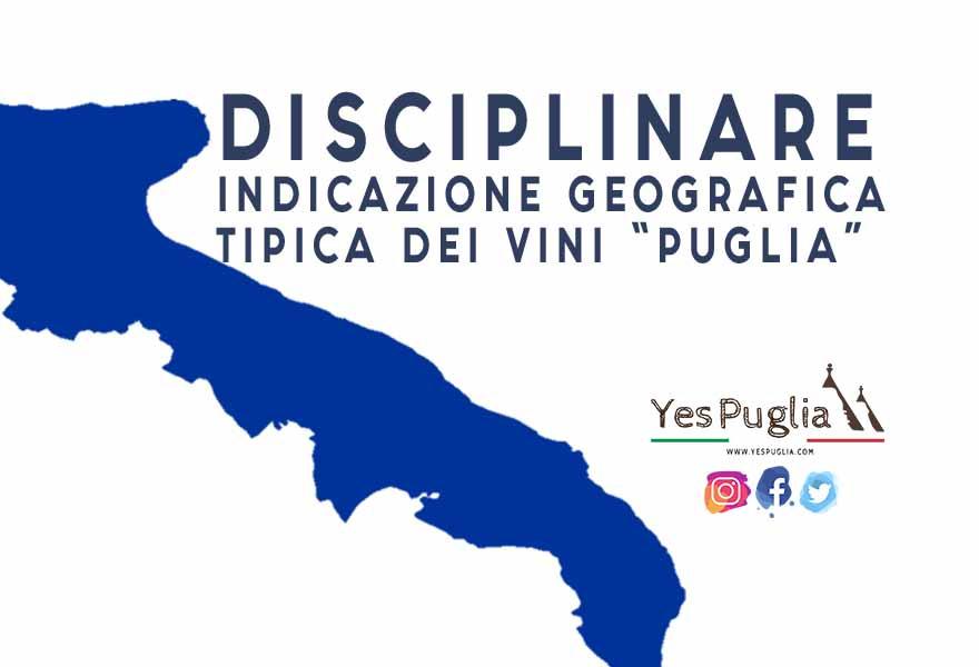 DISCIPLINARE DI PRODUZIONE DELLA INDICAZIONE GEOGRAFICA TIPICA DEI VINI PUGLIA vino brindisi doc yespuglia.com enoteca online più innovativa di puglia