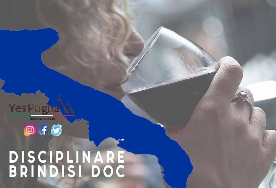 Disciplinare BRindisi Doc vino brindisi doc yespuglia.com enoteca online più innovativa di puglia
